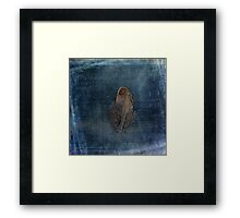 Feather with Meaning Framed Print
