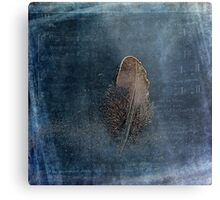 Feather with Meaning Metal Print