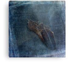 Flocking Feathers Metal Print