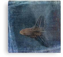 Flight of a Feather Metal Print