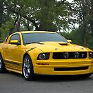 2009 Mustang by TeeMack