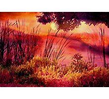 A New Day Photographic Print