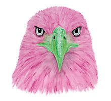 Special Eagle (pink) Photographic Print