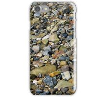 a natural history in colour iPhone Case/Skin