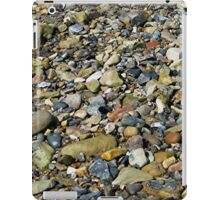 a natural history in colour iPad Case/Skin