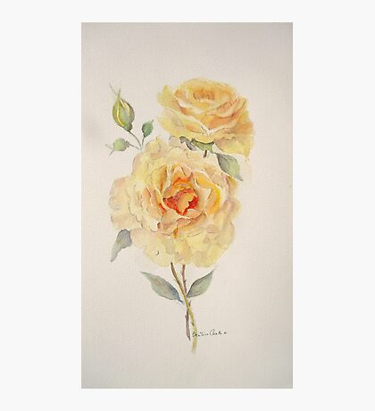 One rose or two Photographic Print