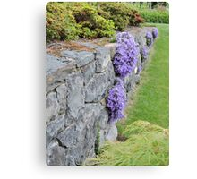 Lilac Wall Canvas Print
