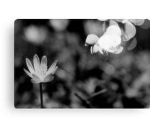 Macro Flower Black and White Canvas Print
