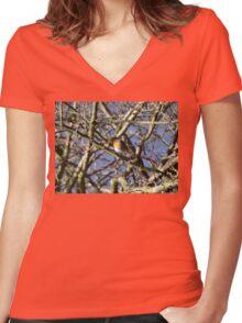 Winter Robin Women's Fitted V-Neck T-Shirt