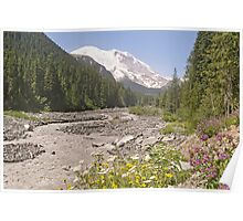 Mount Rainier from White River Campground Trail Poster