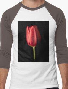 Tulip  Men's Baseball ¾ T-Shirt