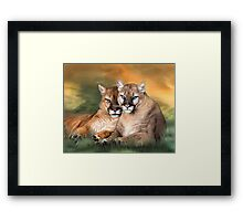 Cougar - Spirit Warrior Framed Print
