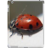 Dusted Lady iPad Case/Skin