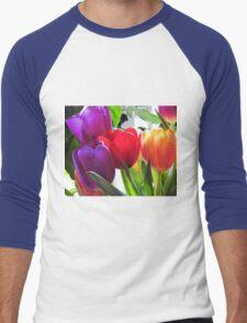 Tulips Men's Baseball ¾ T-Shirt