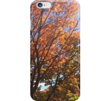 Colorful Autumn Leaves  iPhone Case/Skin