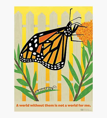 Monarch Conservation Poster Photographic Print