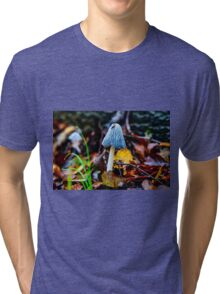 Wonderful Fungi Tri-blend T-Shirt