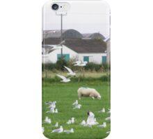 UN 405 North atlantic Squadron Gull patrol with Ground Crew iPhone Case/Skin