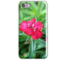 Close up Pink flower photograph  iPhone Case/Skin