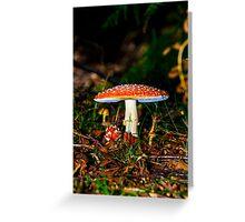 Big mushroom little mushroom Greeting Card