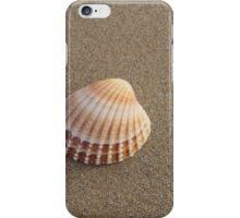Solitary Cockle Shell iPhone Case/Skin
