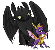 Spyro and Toothless Photographic Print