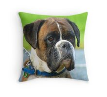 Beautiful Jowls! - Boxer Dog - NZ Throw Pillow