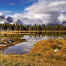 Vermilion Lake and Forest by paolo1955
