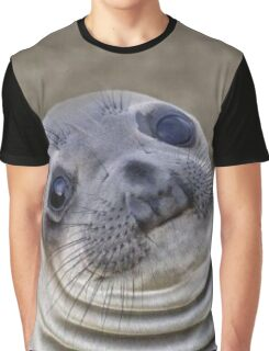Awkward Seal Graphic T-Shirt