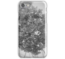 Hydrangea In Black & White iPhone Case/Skin