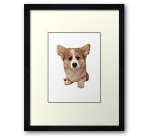 Mason the Corgi Framed Print