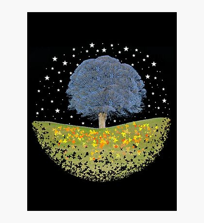 Starry Night Sky Photographic Print