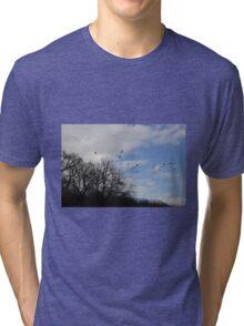 winter walks Tri-blend T-Shirt