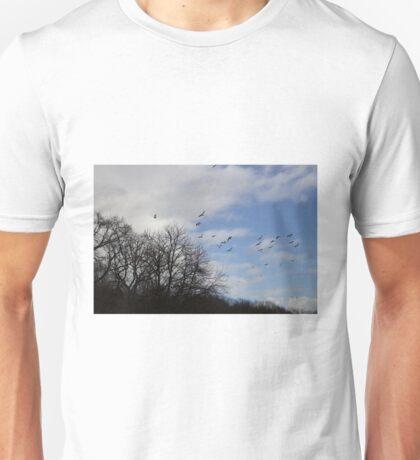 winter walks Unisex T-Shirt