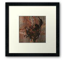 Avey Tare's Slasher Flicks Framed Print