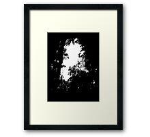 A break in the jungle Framed Print