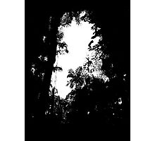 A break in the jungle Photographic Print