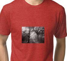 Sunburst in the Glade Tri-blend T-Shirt