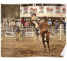 Rodeo Cowboy is Thrown from his Horse Poster