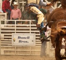 Rodeo Cowboy is Thrown from his Horse Sticker