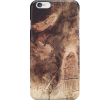 The Woods 3 iPhone Case/Skin