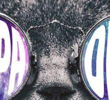 KD Kat Sticker