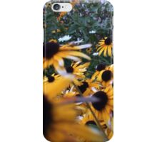 Pretty Daisies iPhone Case/Skin