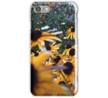 Pretty Daisies iPhone Case/Skin