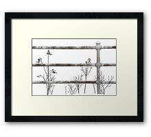 Winter - Smarts Hill Cemetary - Sweden, Maine Framed Print