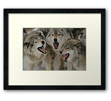 Watching Youtube Framed Print