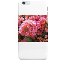 BOUGAINVILLEA BUSH iPhone Case/Skin