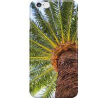 Beneath the Palms iPhone Case/Skin