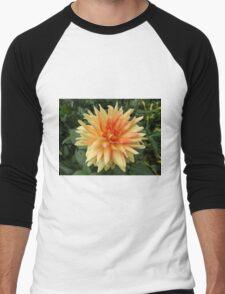 Flower Close-Up, Liberty Community Garden, Lower Manhattan, New York City Men's Baseball ¾ T-Shirt