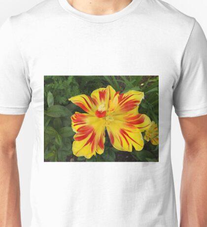 Jersey City, New Jersey, Flower Close-Up T-Shirt